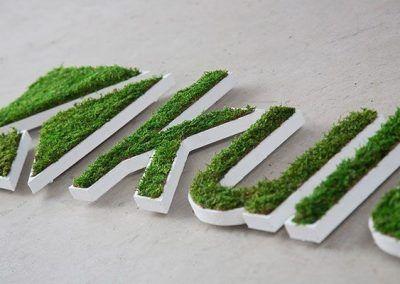Logo vegetal musgo